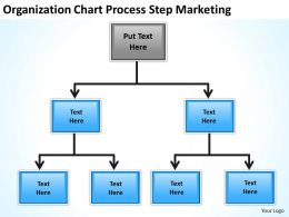 Business Activity Diagram Origanization Chart Process Step Marketing Powerpoint Slides 0515