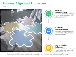 Business Alignment Procedure Ppt Samples Download