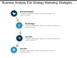 Business Analysis Exit Strategy Marketing Strategies Strategy Development Cpb