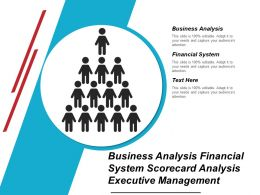 Business Analysis Financial System Scorecard Analysis Executive Management