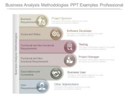 Business Analysis Methodologies Ppt Examples Professional