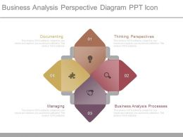 Business Analysis Perspective Diagram Ppt Icon