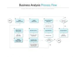 Business Analysis Process Flow