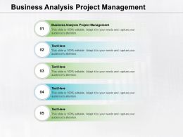 Business Analysis Project Management Ppt Powerpoint Presentation Pictures Icon Cpb