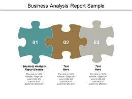 Business Analysis Report Sample Ppt Powerpoint Presentation Styles Cpb
