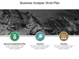 Business Analysis Work Plan Ppt Powerpoint Presentation Ideas Guidelines Cpb