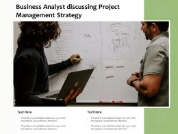 Business Analyst Discussing Project Management Strategy