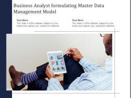 Business Analyst Formulating Master Data Management Model