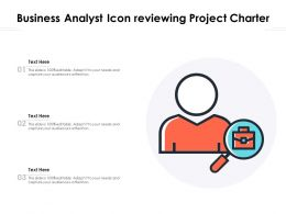Business Analyst Icon Reviewing Project Charter