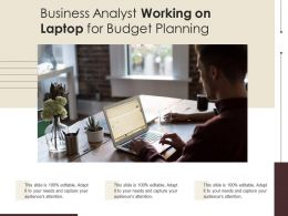 Business Analyst Working On Laptop For Budget Planning