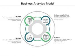 Business Analytics Model Ppt Powerpoint Presentation Ideas Brochure Cpb