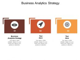 Business Analytics Strategy Ppt Powerpoint Presentation Model Example Cpb