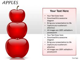 Business Apples ppt 25