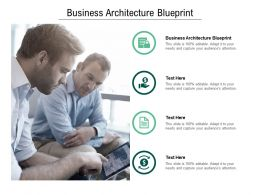 Business Architecture Blueprint Ppt Powerpoint Presentation Layouts Tips Cpb