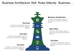 Business Architecture Skill Roles Maturity Business Method Execution