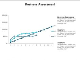 Business Assessment Ppt Powerpoint Presentation Infographics Infographic Template Cpb