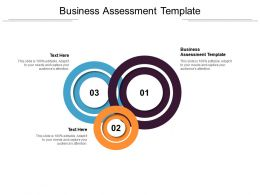 Business Assessment Template Ppt Powerpoint Presentation Portfolio Rules Cpb