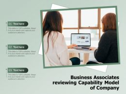 Business Associates Reviewing Capability Model Of Company