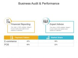 Business Audit And Performance Sample Of Ppt Presentation