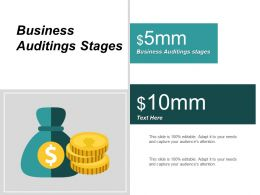 Business Auditings Stages Ppt Powerpoint Presentation Infographics Gridlines Cpb