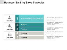 Business Banking Sales Strategies Ppt Powerpoint Presentation Portfolio Summary Cpb