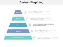 Business Blueprinting Ppt Powerpoint Presentation Layouts Microsoft Cpb