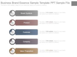 Business Brand Essence Sample Template Ppt Sample File