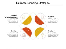 Business Branding Strategies Ppt Powerpoint Presentation Outline Pictures Cpb