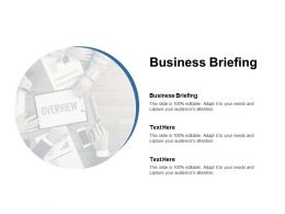 Business Briefing Ppt Powerpoint Presentation Visual Aids Professional Cpb
