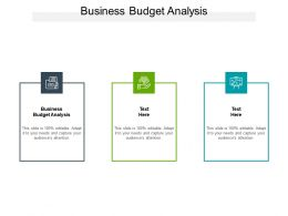 Business Budget Analysis Ppt Powerpoint Presentation Summary Graphics Download Cpb