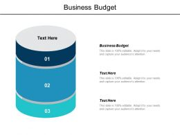 Business Budget Ppt Powerpoint Presentation Ideas Background Images Cpb