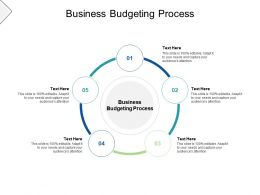 Business Budgeting Process Ppt Powerpoint Presentation File Background Image Cpb