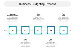 Business Budgeting Process Ppt Powerpoint Presentation Professional Show Cpb