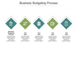 Business Budgeting Process Ppt Powerpoint Presentation Visual Aids Summary Cpb