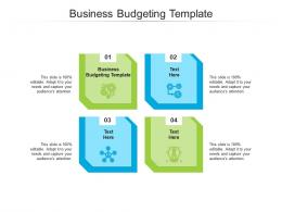 Business Budgeting Template Ppt Powerpoint Presentation Diagram Graph Charts Cpb