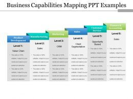 Business Capabilities Mapping Ppt Examples
