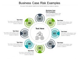 Business Case Risk Examples Ppt Powerpoint Infographic Template Show Cpb