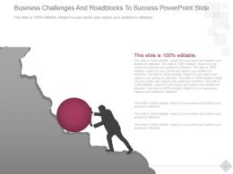Business Challenges And Roadblocks To Success Powerpoint Slide