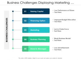 Business Challenges Displaying Marketing And Financial Problems