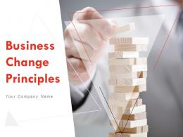 Business Change Principles Powerpoint Presentation Slides