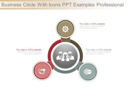 Business Circle With Icons Ppt Examples Professional