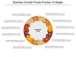 Business Circular Puzzle Process 12 Stages