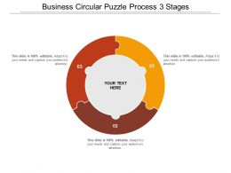 Business Circular Puzzle Process 3 Stages