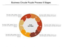 Business Circular Puzzle Process 6 Stages
