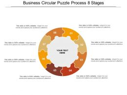 Business Circular Puzzle Process 8 Stages