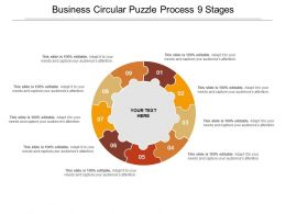 Business Circular Puzzle Process 9 Stages