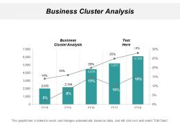 Business Cluster Analysis Ppt Powerpoint Presentation Gallery Backgrounds Cpb