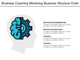 Business Coaching Mentoring Business Structure Chart Succession Management Cpb