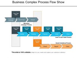 Business Complex Process Flow Show PowerPoint Slide Inspiration