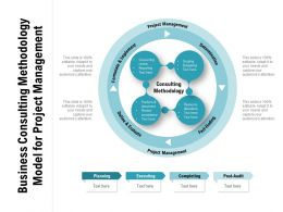 Business Consulting Methodology Model For Project Management